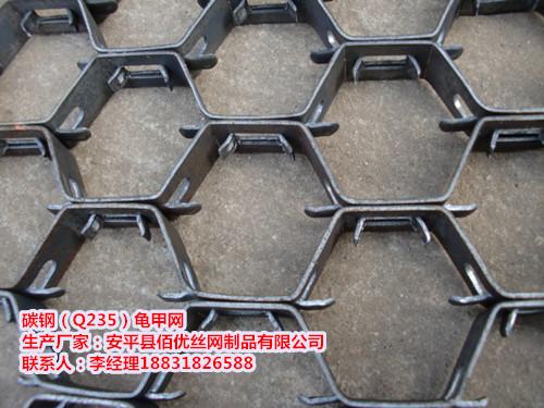 Q235)龟甲网